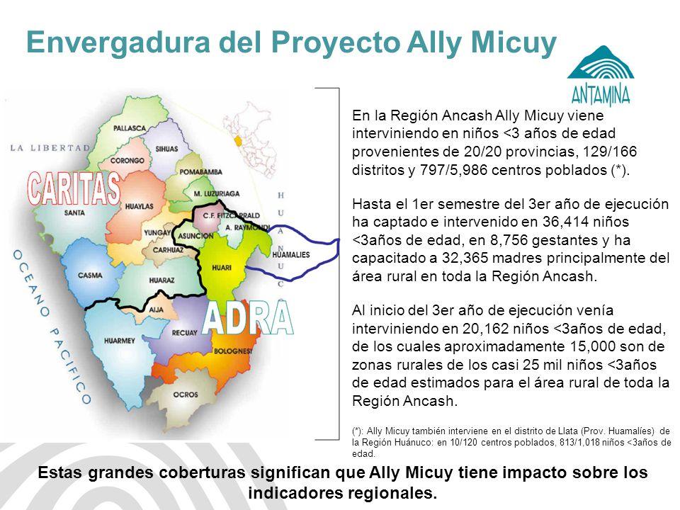 Envergadura del Proyecto Ally Micuy