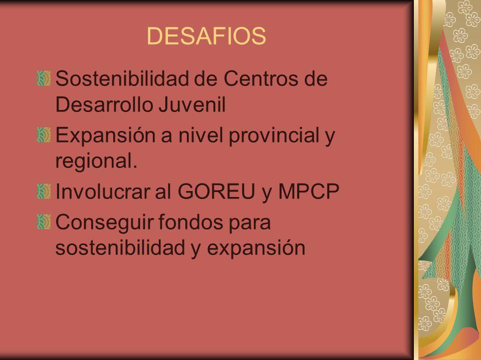 DESAFIOS Sostenibilidad de Centros de Desarrollo Juvenil