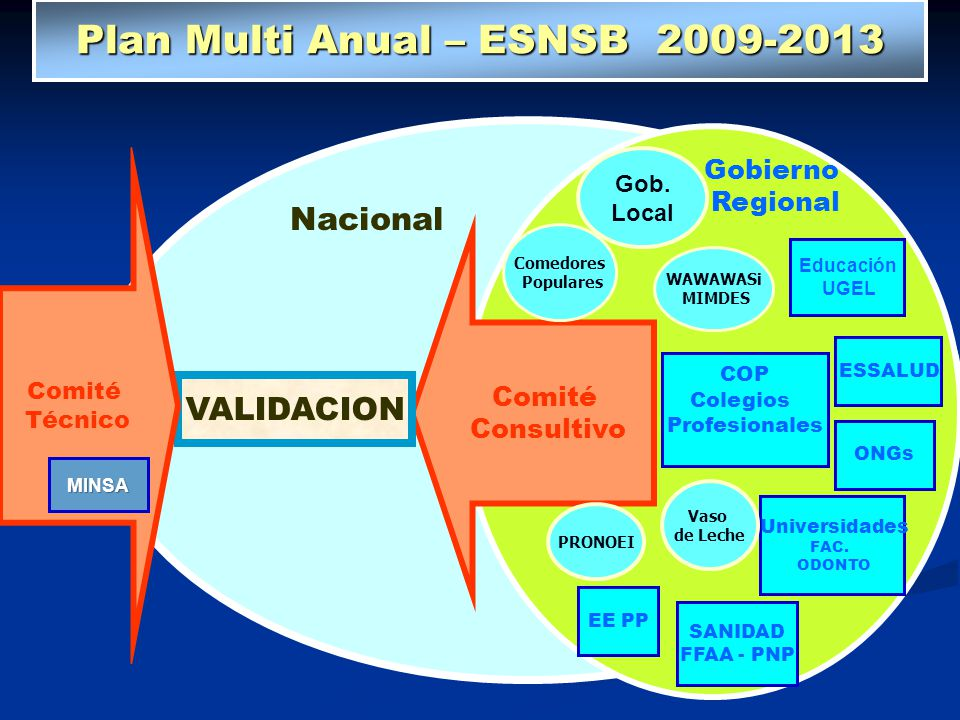 Plan Multi Anual – ESNSB 2009-2013