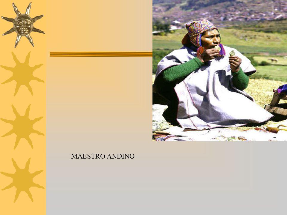 MAESTRO ANDINO