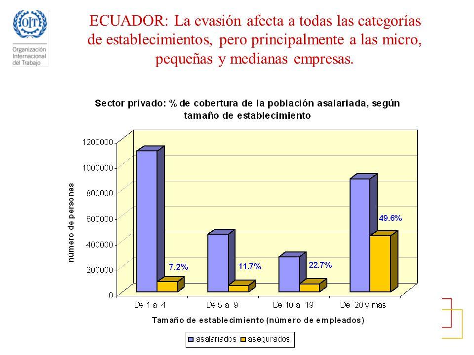 ECUADOR: La evasión afecta a todas las categorías de establecimientos, pero principalmente a las micro, pequeñas y medianas empresas.