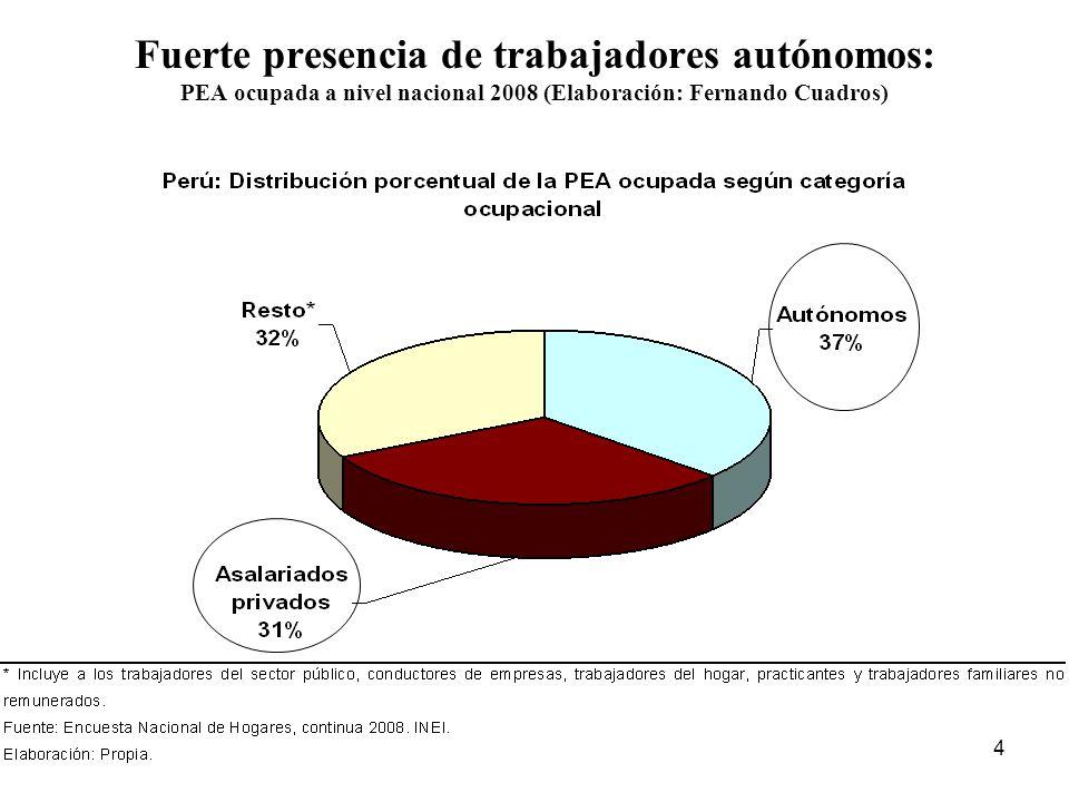 Fuerte presencia de trabajadores autónomos: PEA ocupada a nivel nacional 2008 (Elaboración: Fernando Cuadros)