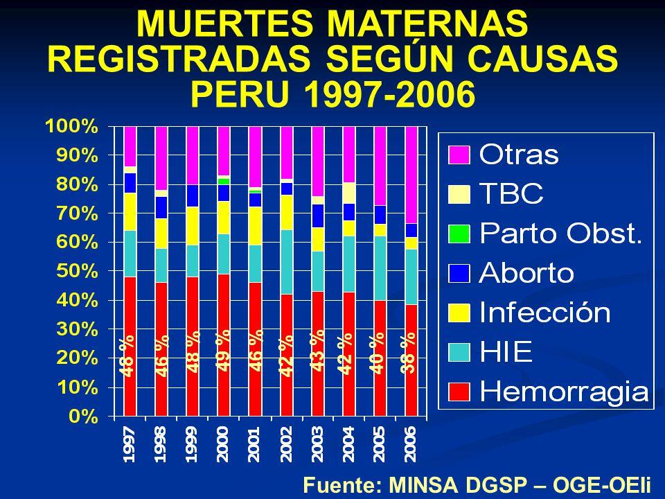 MUERTES MATERNAS REGISTRADAS SEGÚN CAUSAS PERU 1997-2006