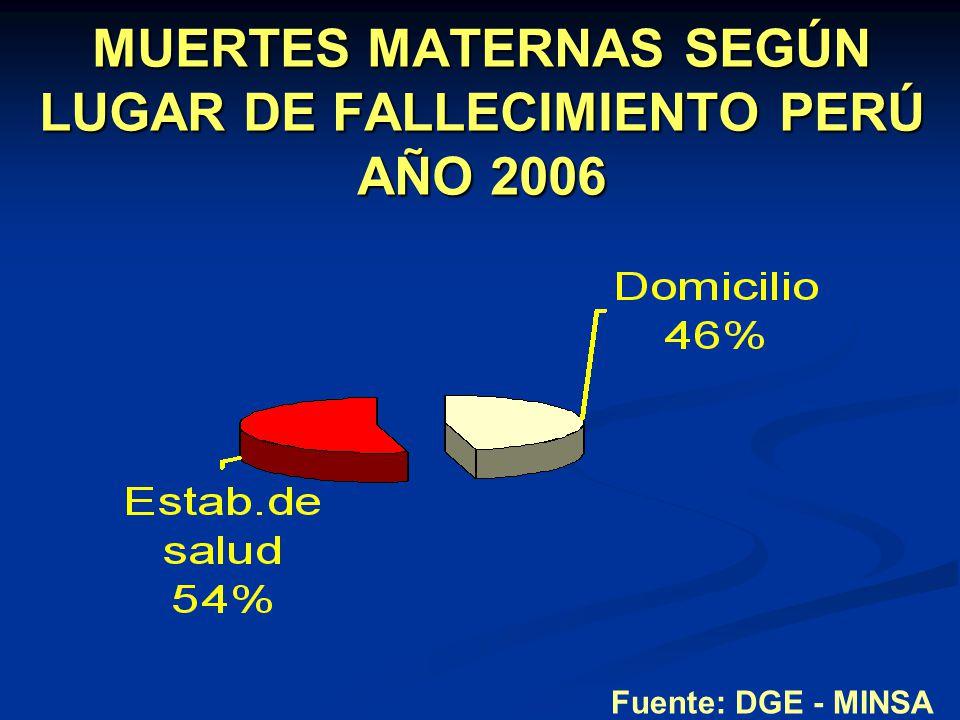 MUERTES MATERNAS SEGÚN LUGAR DE FALLECIMIENTO PERÚ AÑO 2006
