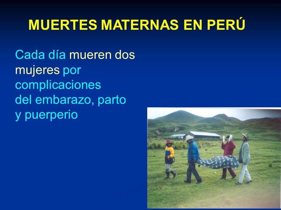 MUERTES MATERNAS EN PERÚ