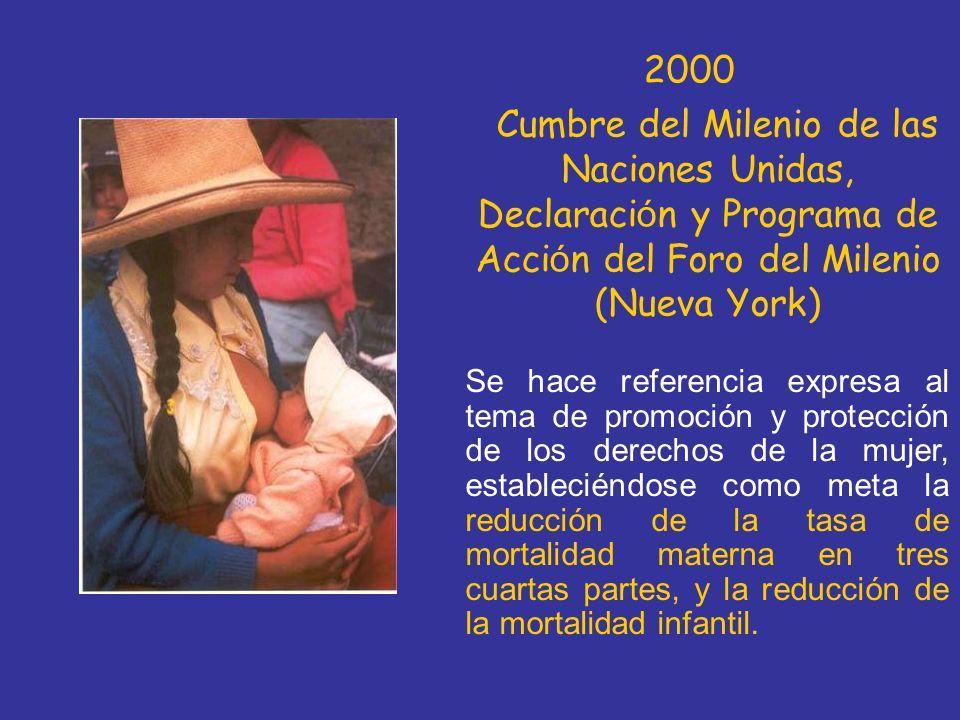 2000 Cumbre del Milenio de las Naciones Unidas, Declaración y Programa de Acción del Foro del Milenio (Nueva York)