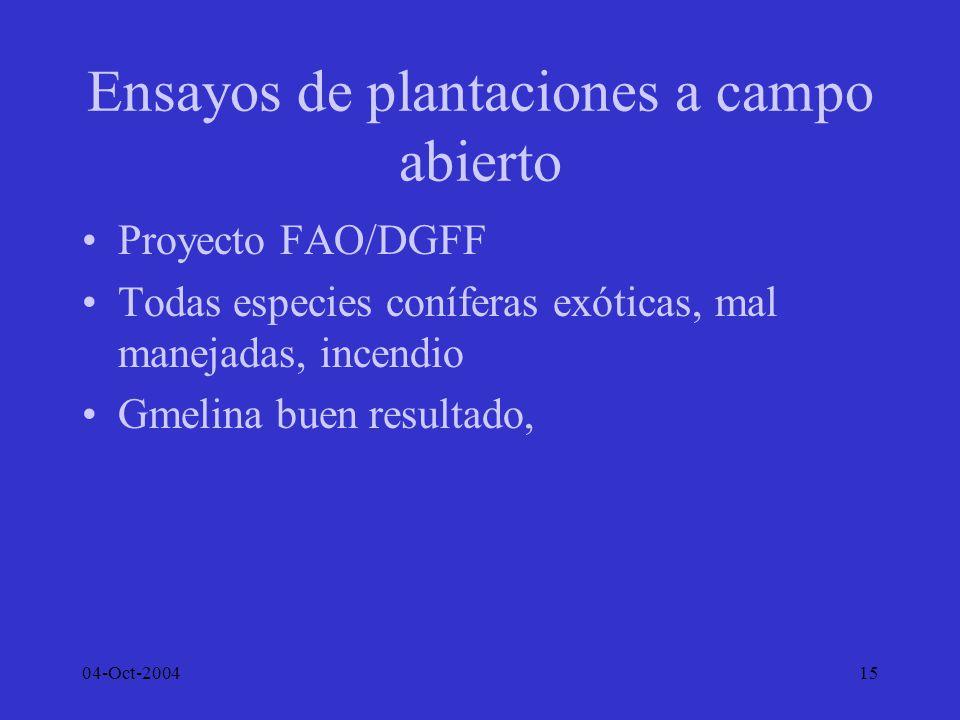 Ensayos de plantaciones a campo abierto