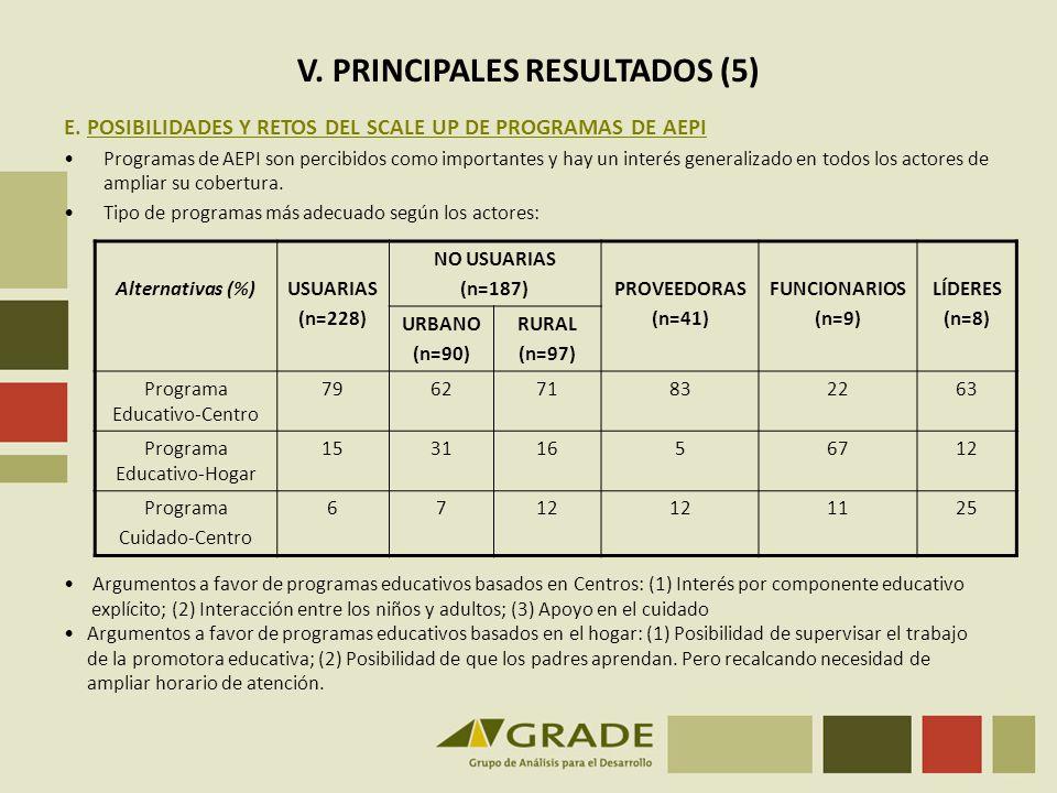 V. PRINCIPALES RESULTADOS (5)