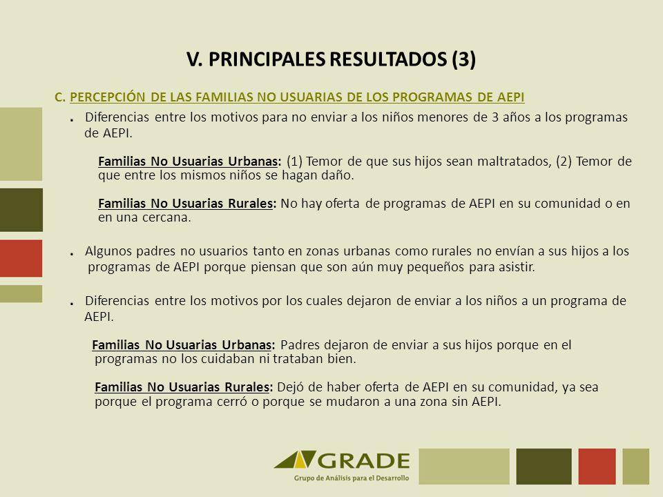V. PRINCIPALES RESULTADOS (3)