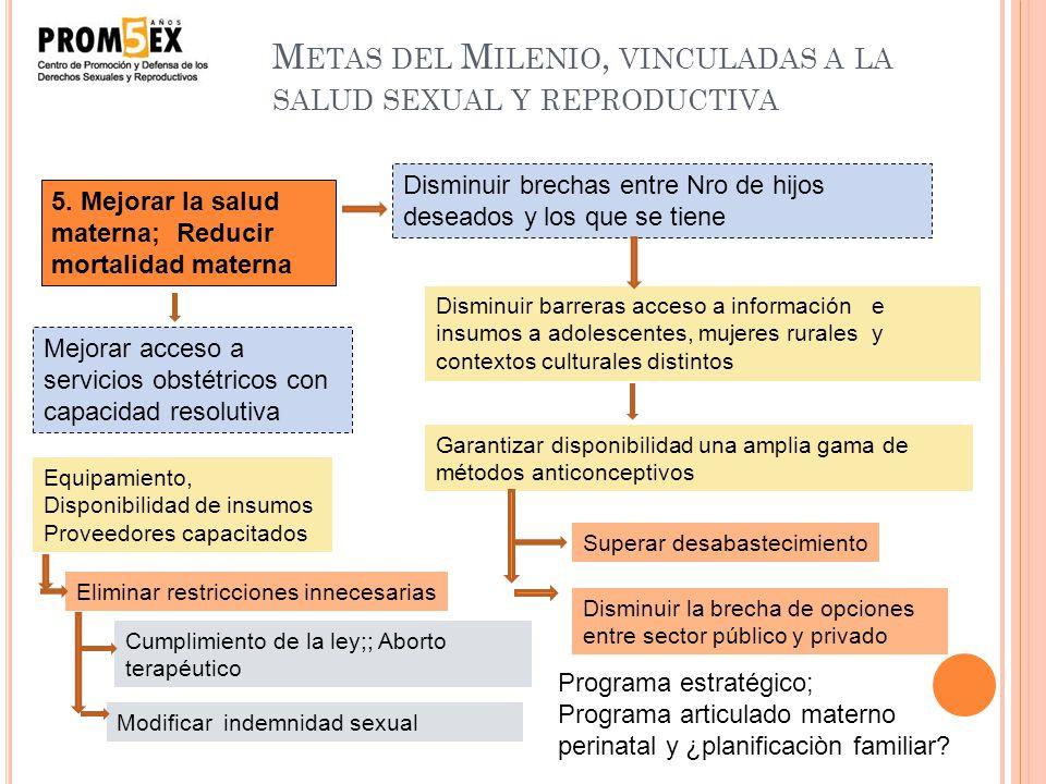 Metas del Milenio, vinculadas a la salud sexual y reproductiva