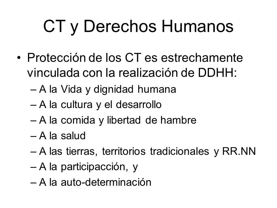 CT y Derechos Humanos Protección de los CT es estrechamente vinculada con la realización de DDHH: A la Vida y dignidad humana.