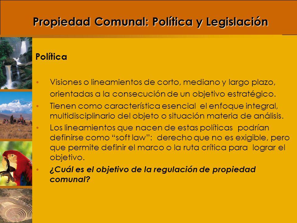 Propiedad Comunal: Política y Legislación