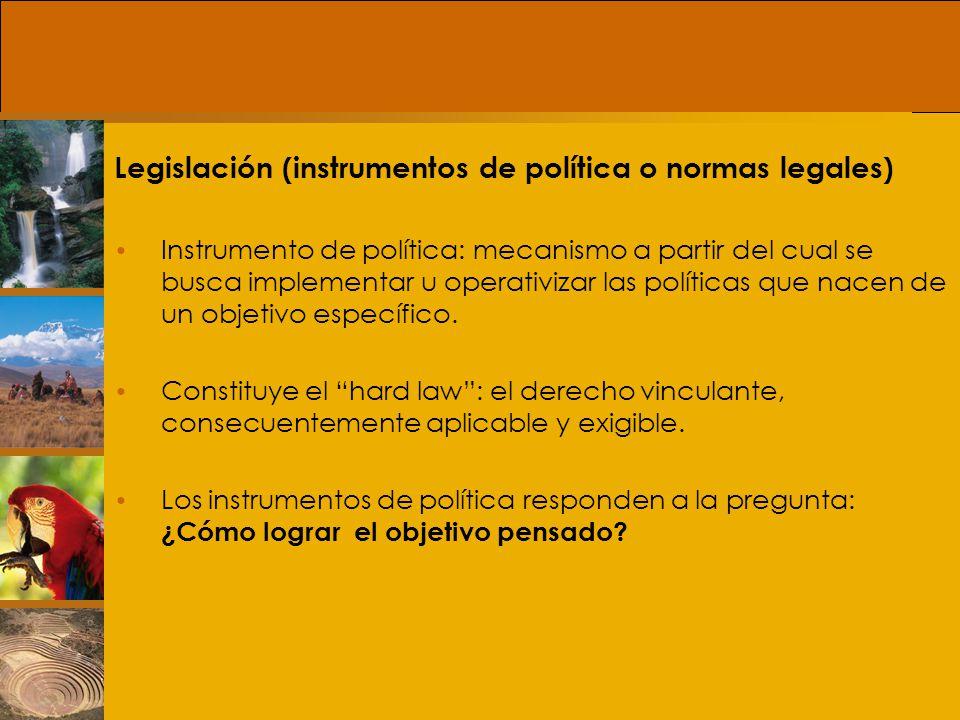Legislación (instrumentos de política o normas legales)