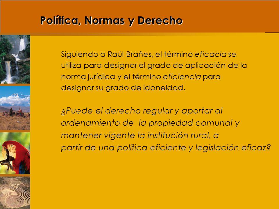 Política, Normas y Derecho