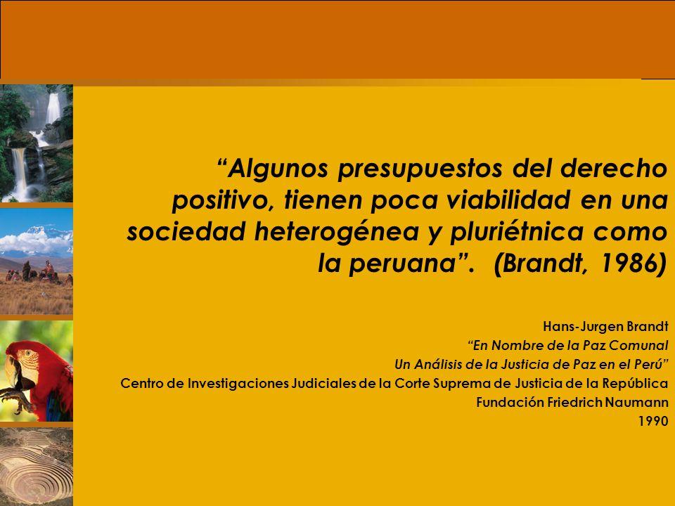 Algunos presupuestos del derecho positivo, tienen poca viabilidad en una sociedad heterogénea y pluriétnica como la peruana . (Brandt, 1986)