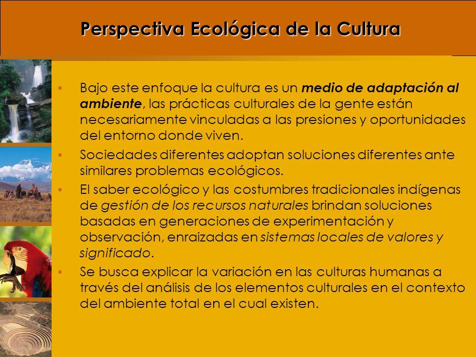 Perspectiva Ecológica de la Cultura