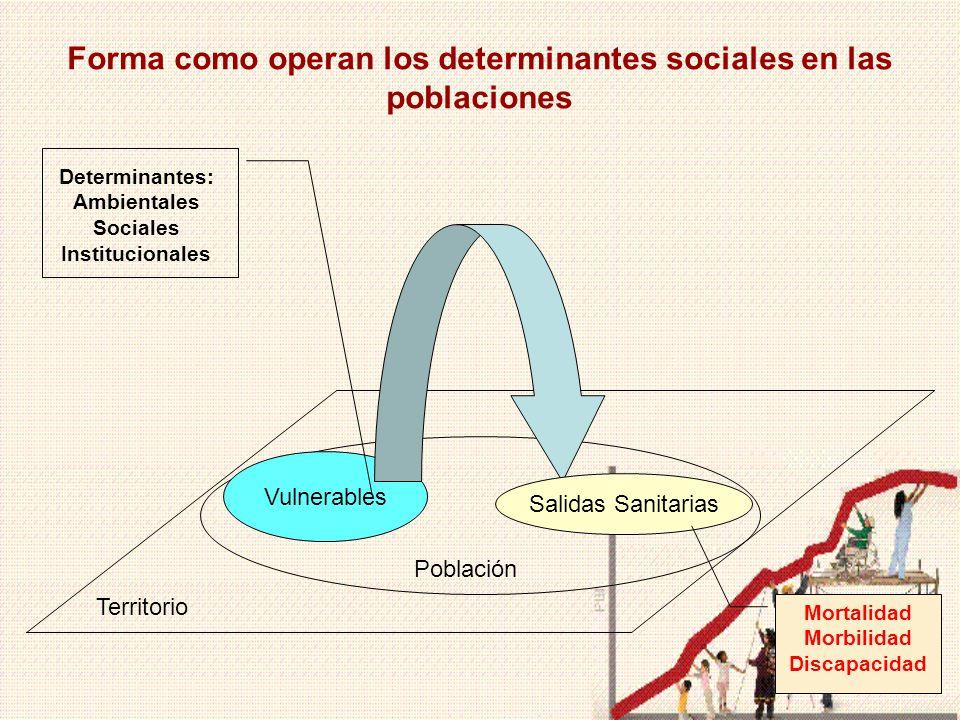 Forma como operan los determinantes sociales en las poblaciones