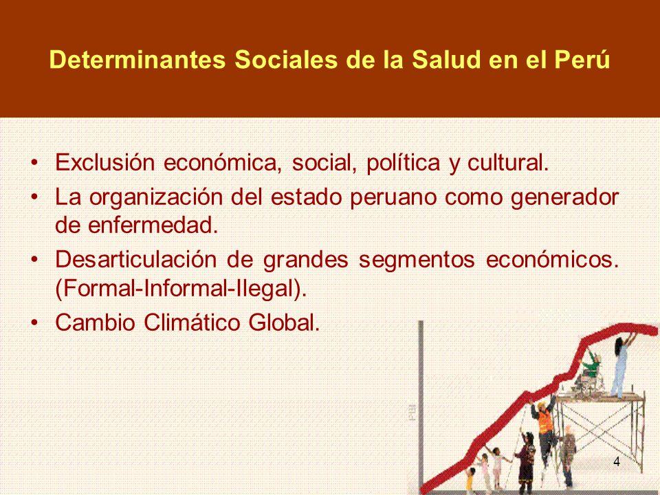 Determinantes Sociales de la Salud en el Perú