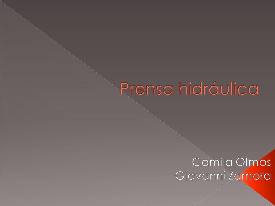 Camila Olmos Giovanni Zamora