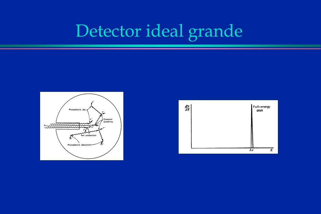 Detector ideal grande