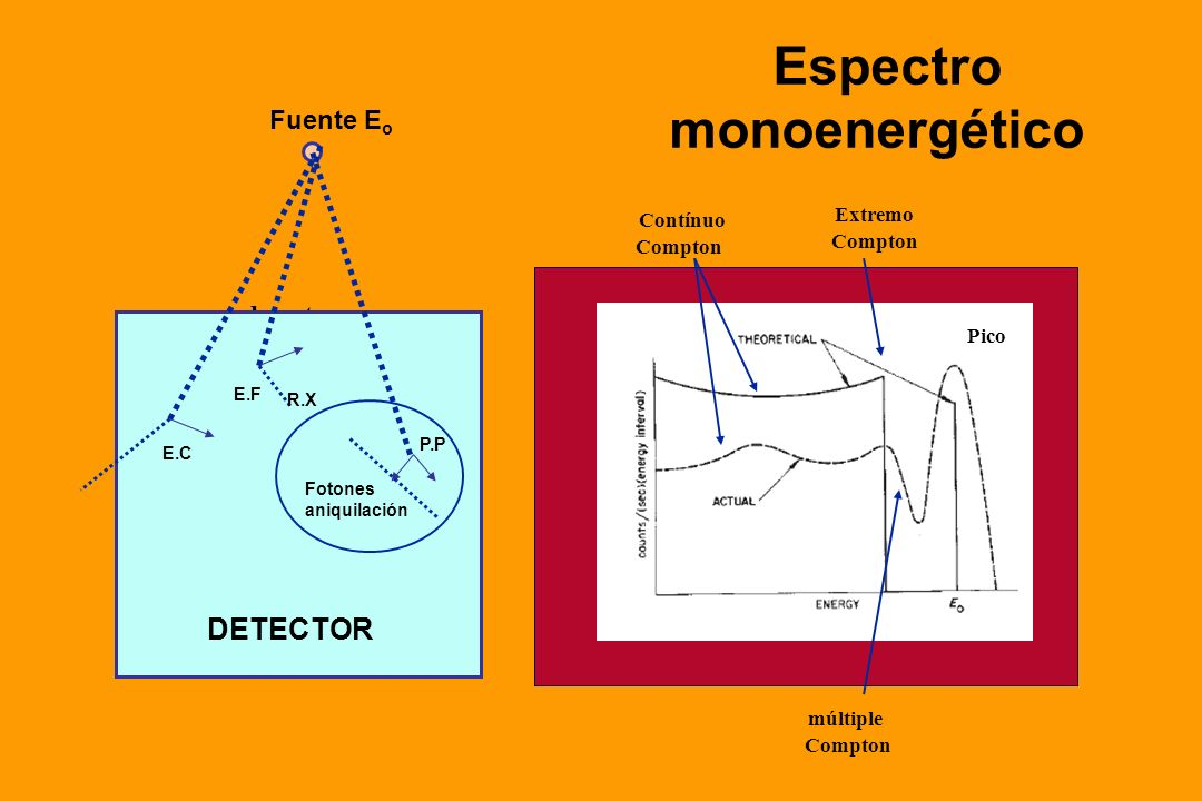 Espectro monoenergético DETECTOR Fuente Eo Extremo Contínuo detector