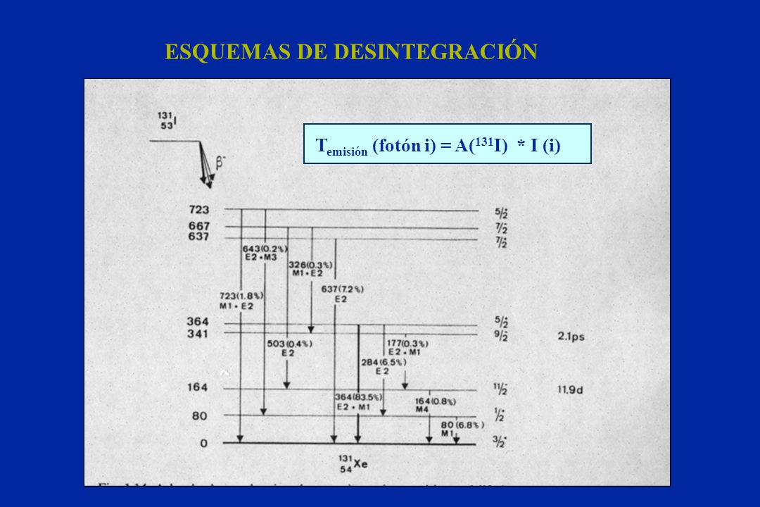 ESQUEMAS DE DESINTEGRACIÓN