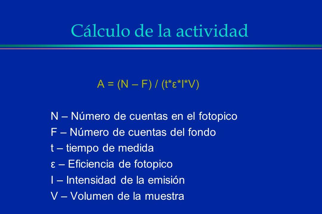 Cálculo de la actividad