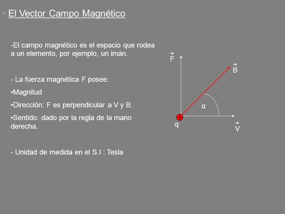 · El Vector Campo Magnético