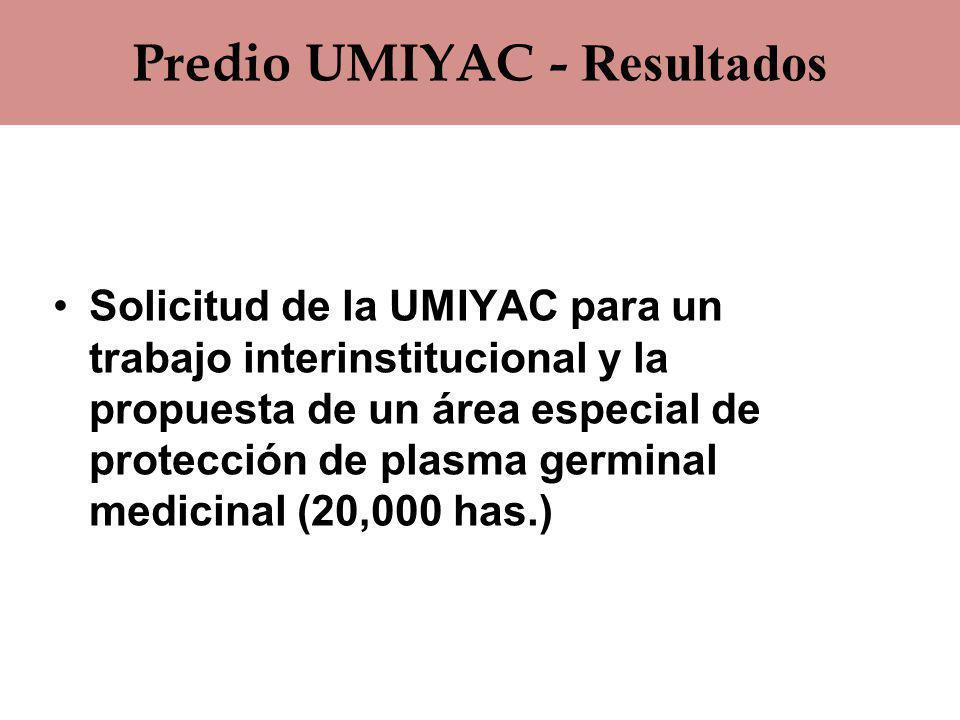 Predio UMIYAC - Resultados