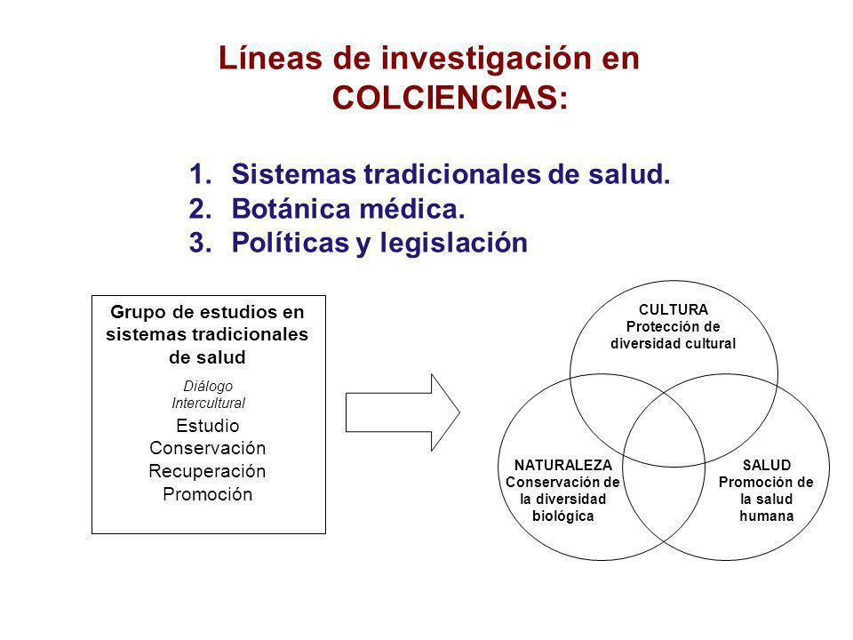 Líneas de investigación en COLCIENCIAS: