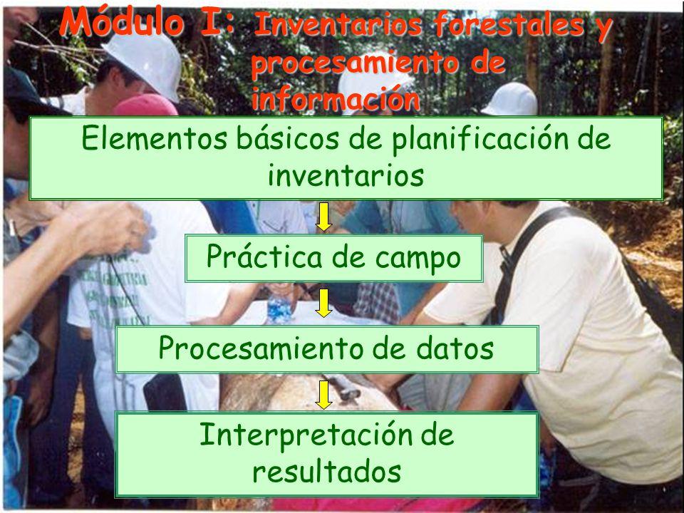 Módulo I: Inventarios forestales y procesamiento de información