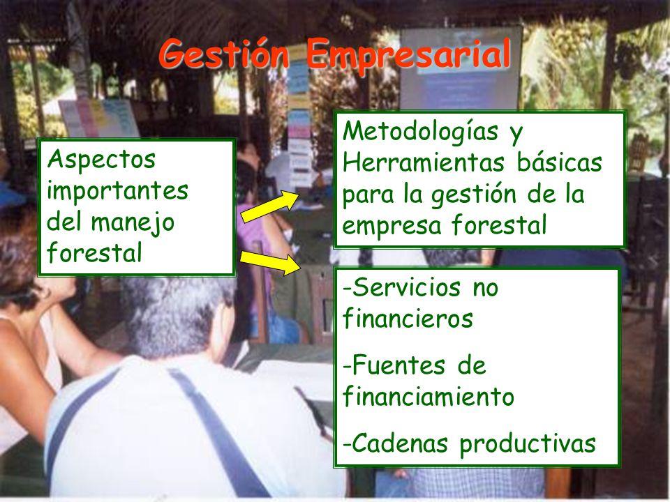 Gestión Empresarial Metodologías y Herramientas básicas para la gestión de la empresa forestal. Aspectos importantes del manejo forestal.