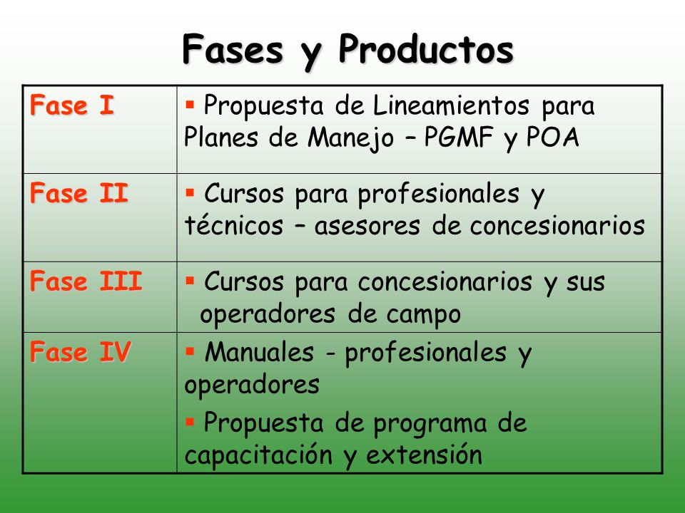 Fases y Productos Fase I