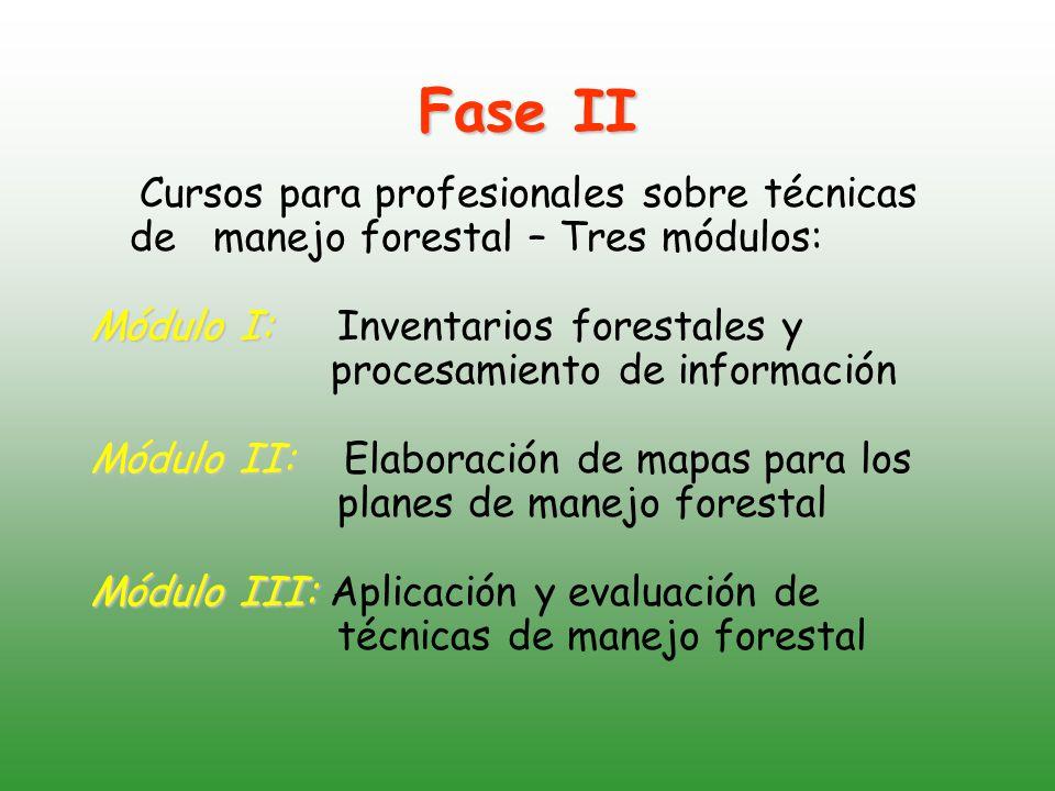 Fase II Cursos para profesionales sobre técnicas de manejo forestal – Tres módulos: