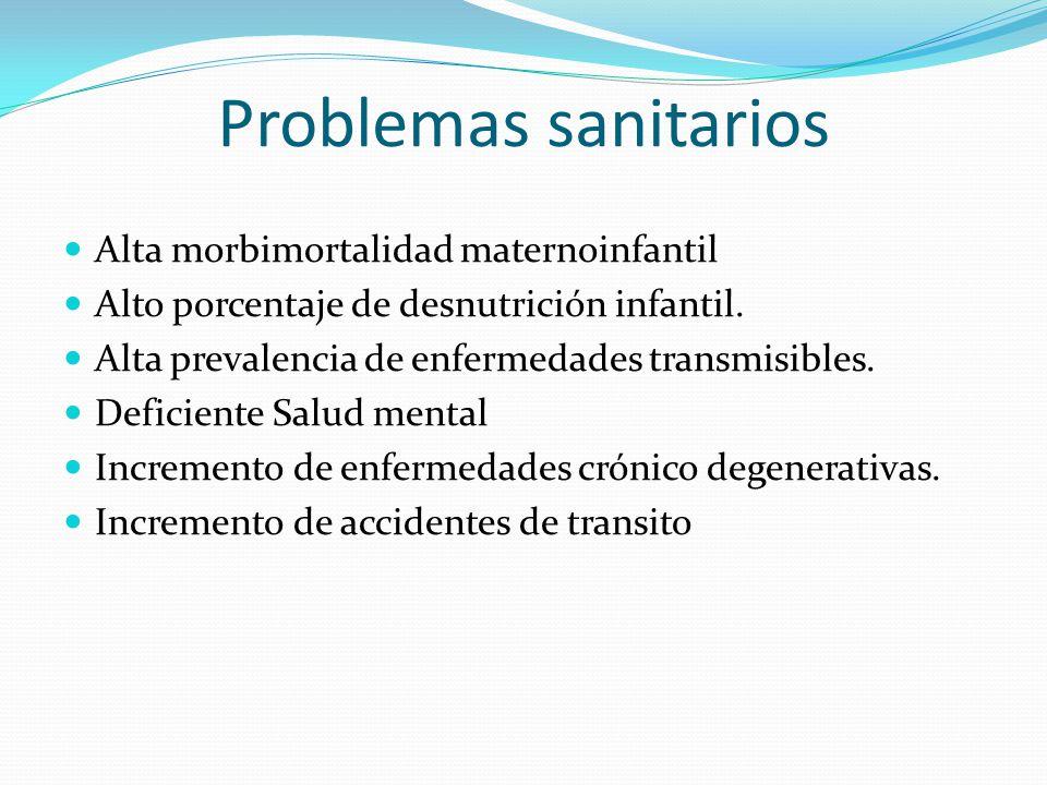 Problemas sanitarios Alta morbimortalidad maternoinfantil
