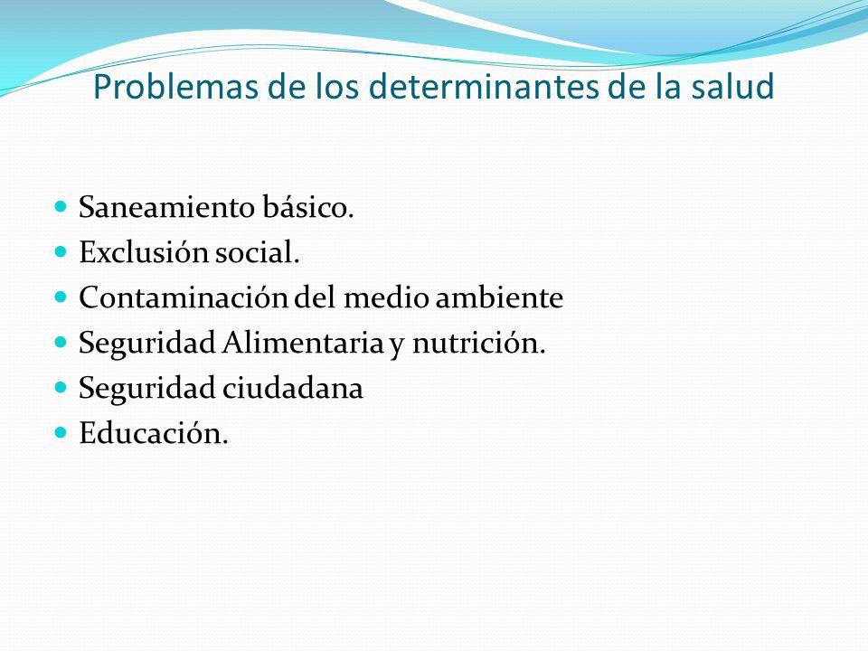 Problemas de los determinantes de la salud