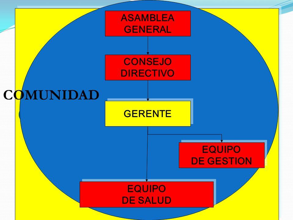 GERENTE COMUNIDAD ASAMBLEA GENERAL CONSEJO DIRECTIVO GERENTE EQUIPO