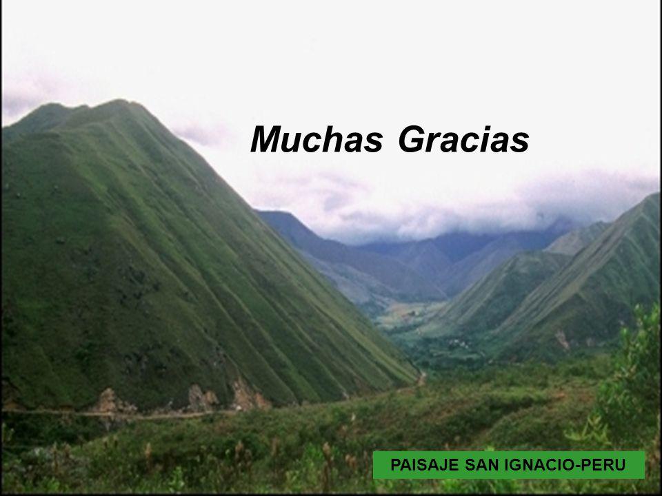 PAISAJE SAN IGNACIO-PERU