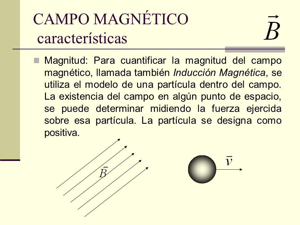CAMPO MAGNÉTICO características
