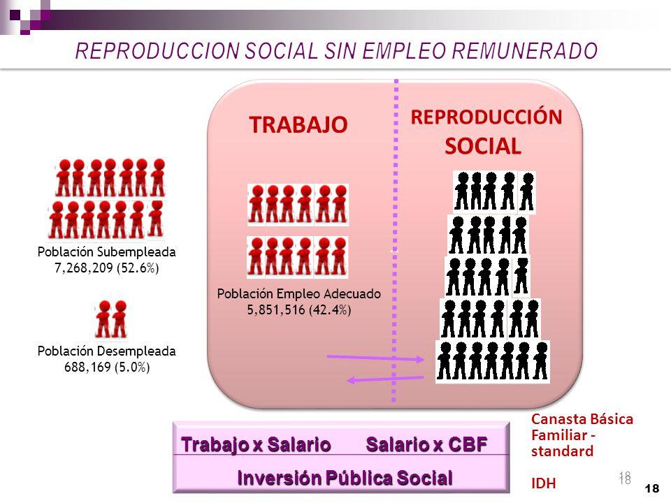 REPRODUCCION SOCIAL SIN EMPLEO REMUNERADO