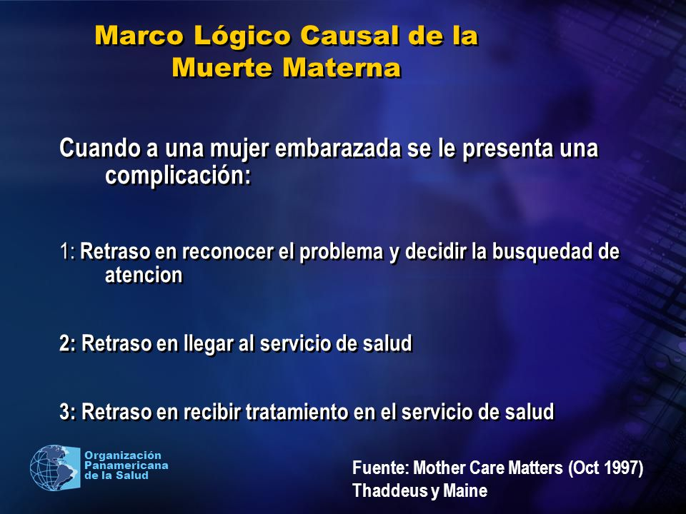 Marco Lógico Causal de la Muerte Materna
