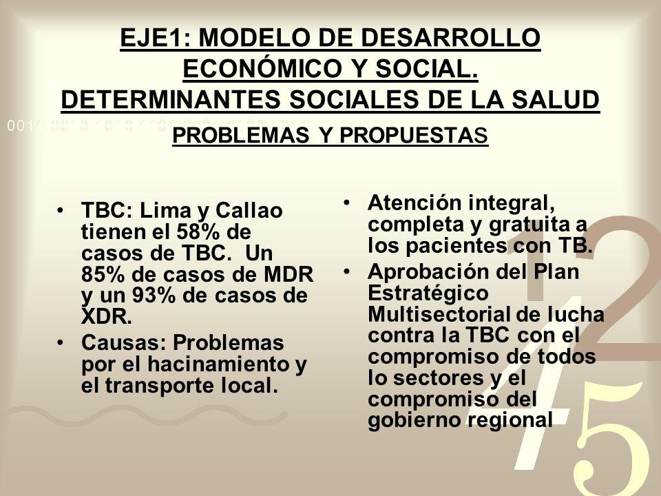 EJE1: MODELO DE DESARROLLO ECONÓMICO Y SOCIAL