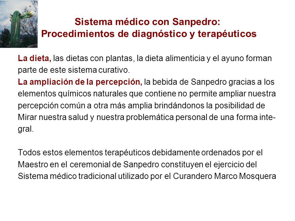 Sistema médico con Sanpedro: Procedimientos de diagnóstico y terapéuticos