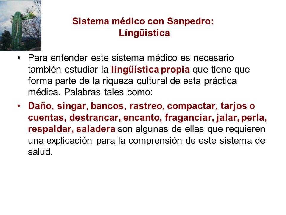 Sistema médico con Sanpedro: Língüistica
