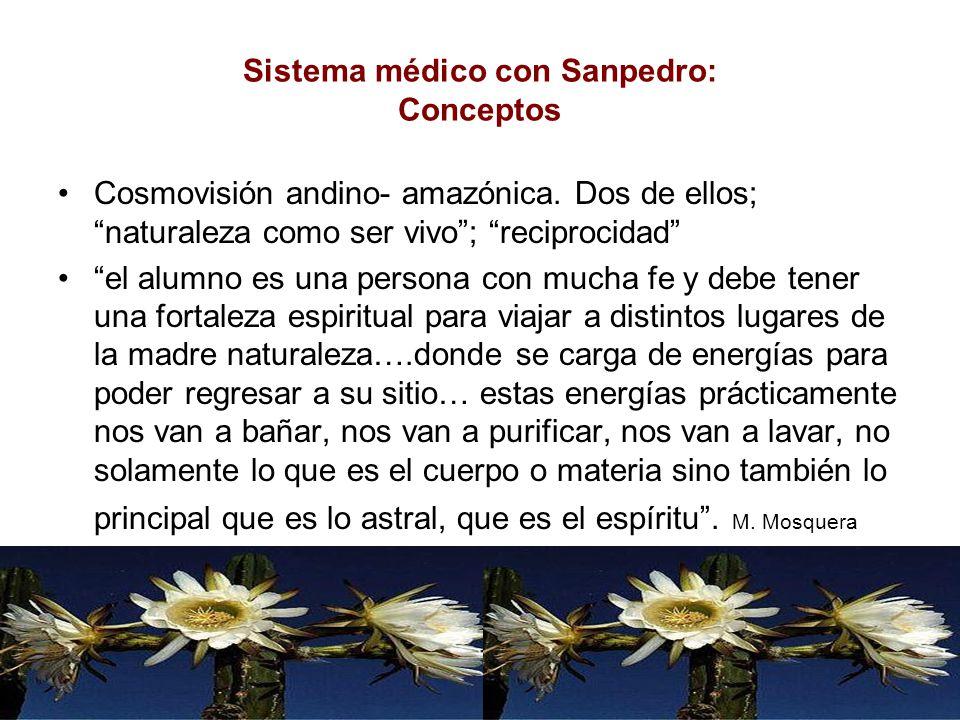 Sistema médico con Sanpedro: Conceptos