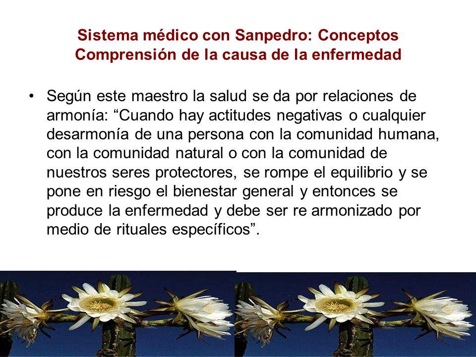 Sistema médico con Sanpedro: Conceptos Comprensión de la causa de la enfermedad