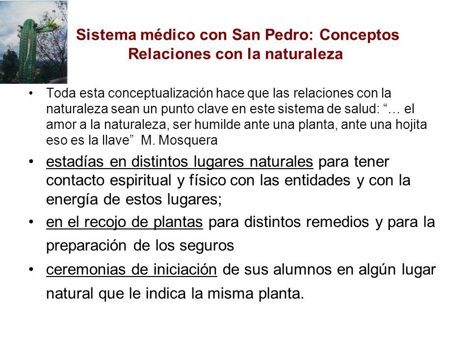 Sistema médico con San Pedro: Conceptos Relaciones con la naturaleza