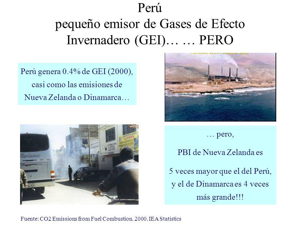 pequeño emisor de Gases de Efecto Invernadero (GEI)… … PERO