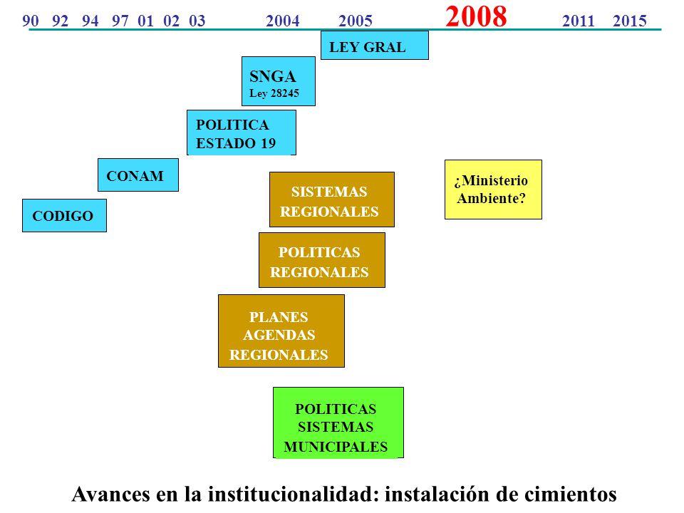 Avances en la institucionalidad: instalación de cimientos