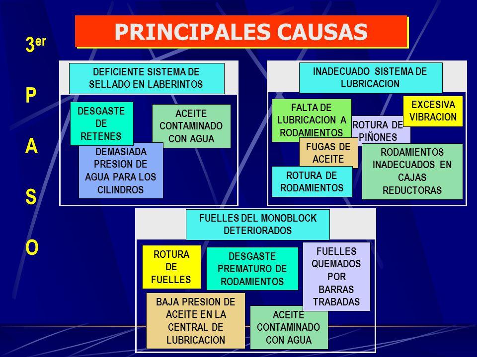 PRINCIPALES CAUSAS 3er P A S O